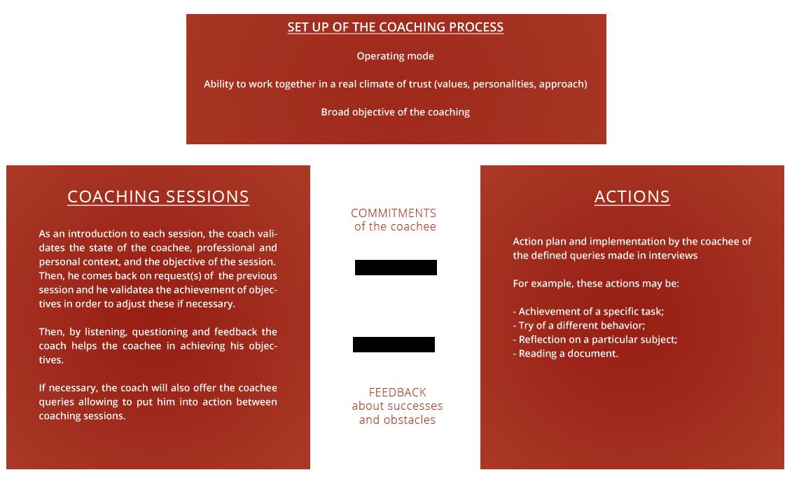 Business Coaching Methodology